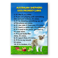 SCOTTISH DEERHOUND iPoop FRIDGE MAGNET Funny DOG