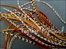 Whiting Grizzly Saddle Hackle Feathers Cree Feather Hair Extensions