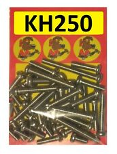 Kawasaki KH250 - Crankcase Covers Kit - A2 Stainless Philips Head Screws