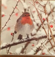 Support WESC Foundation Charity: Christmas Cards 10 Pack - Robin Design