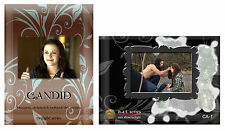 NAT (Nuts About Twilight) Twilight Series Candid Set Trading Cards