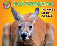 Red Kangaroo: The Worlds Largest Marsupial (More