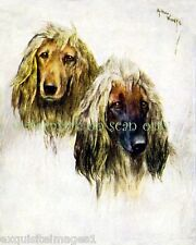 Antique Art~Wardle~Afghan Hound Dogs~New Lg Note Cards