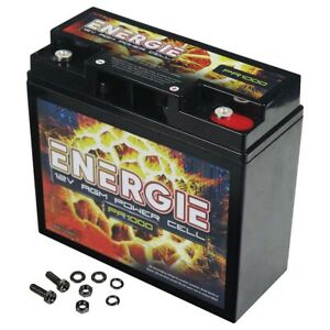 Reikken PR1000 Energie 1000 Watt 12 Volt Power Cell