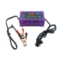 12V/24V Electric Car Vehicle Battery Charger Maintainer Automatic Pulse Repair