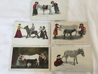 5 Vintage Burro Series Post Cards Posted & Unposted