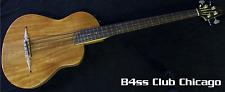 Rick Turner Renaissance Rb4-FL-SP Mahogany Studio Special Fretless Bass