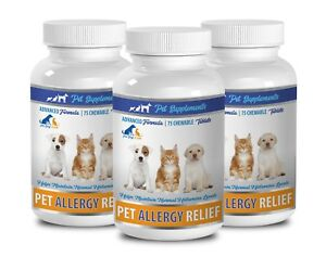 skin care for dogs - ALLERGY RELIEF FOR DOGS AND CATS 3B- quercetin dogs