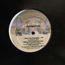 "ANIMOTION I WANT YOU 12"" CASABLANCA"