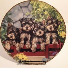 """The Danbury Mint Yorkshire Terrier """"On the Go"""" Yorkie Family Collectors Plates"""