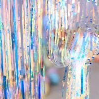 Metallic Rainbow Foil Curtain Fringe Tinsel Birthday Wedding Party Hanging Decor