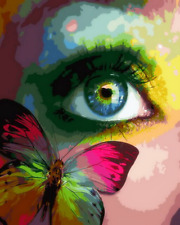 Colorful Eye & Butterfly Canvas Modern Picture Oil DIY Paint Set by Numbers Kits