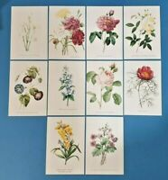 Set of 10 NEW Flowers Postcards (set 3) for Postcrossing & Postcardsofkindness