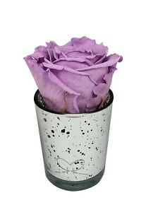 Preserved rose -LILAC- In silver mercury glass  long-lasting eternal real luxury