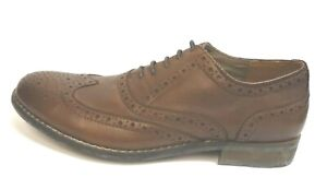 Steve Madden Size 8 Wing Tip  Oxfords Brown Leather New Mens Shoes