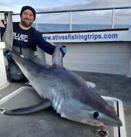 Surf Shark Fishing Rig 8//0 Red Circle Hook