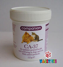 Probiotic Supplement CA-37 Companion Powder for Dogs & Cats 125gm