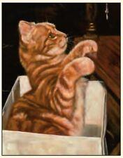 Ginger Gatto Animale Domestico della famiglia Vuoto Compleanno O Carta Saluti