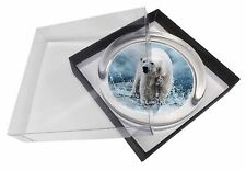 Polar Bear on Ice Water Glass Paperweight in Gift Box Christmas Present, APB-1PW