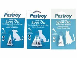 Bob Martin Pestroy Spot On Tick & Flea. Cats, Kittens, Puppies, Large Small Dog