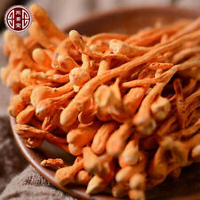 Cordyceps Mushroom Fresh Dried Cordyceps 100% Organic NON-GMO 150g