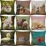 Cotton Linen printing Animal dog Fish Pillows case Home Decor Cushion Cover