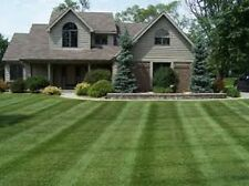 10 Lbs Creeping Red Fescue Grass Seed Shade Tolerant Fine Textured Lawn Grass