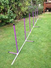 Dog Agility Fixed Base 6 Pole Weave by Jessejump Agility