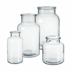 Modern Clear Glass Wide Flower Jar - Twig Stem Bouquet Display Vase