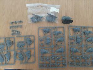 Warhammer Boars miniatures