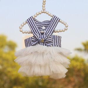 Girl Dog ClothesFemale Dress Tutu Lace Dog Clothing XS S M for Chihuahua Yorkie