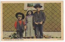 AMISH Children of Lancaster County PA Postcard Vintage Linen Plain Dress