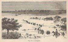 A2293 Il Logone - Xilografia - Stampa Antica del 1895 - Engraving