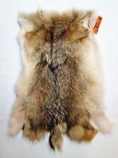 Coyote Back Hide - Tanned Section - Prime From Taxid'st- Craft Manuf or Display
