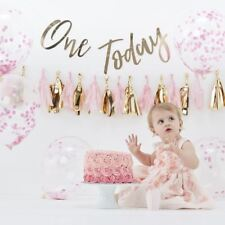 1st Birthday Pink Cake Smash Kit With Balloons Backdrop Party Hat Tassel Garland