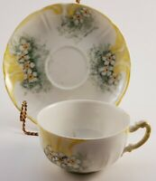 Vintage W. G. and Co. Limoges Tea Cup and Saucer Set