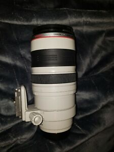 Canon EF 100-400mm F/4.5-5.6 L IS USM Previous Model #89