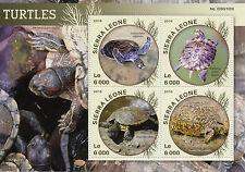 Sierra Leone 2016 MNH Turtles 4v M/S Reptiles Leopard Tortoise Sea Turtle Stamps