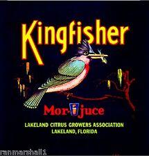 Lakeland Florida Kingfisher Bird #1 Orange Citrus Fruit Crate Label Art Print
