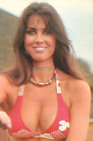 CAROLINE MUNRO IN THE 1970S  SEXY BUSTY  PUBLICITY PHOTO