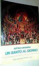 """31) Giuliano Ferrini """" SUL TUO CAMMINO UN SANTO AL GIORNO """" Santi Francescani .."""