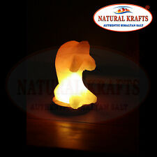 Himalayan White Salt Crystal USB Dolphin Shape with Multi Color LED Bulb Gift