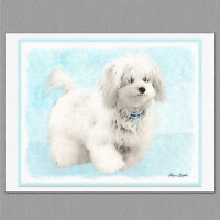 6 Coton de Tulear Blank Art Note Greeting Cards