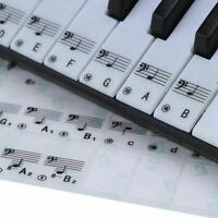 Piano Stickers Transparent Plastic Keyboards Electronics Stave 61 Keys Notes New