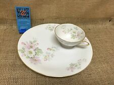 TIRSCHENREUTH BAVARIA GERMANY APPLE BLOSSOM LUNCHEON PLATE TEA CUP COMBO