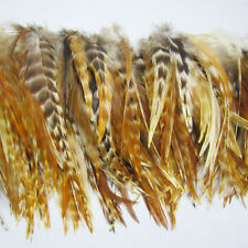 New Fashion Natura Color 500Pcs Grizzly Feathers hair for extensions 6-8inch