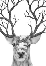Elk Deer Stag Print Fashion Poster Home Interior Wall Picture Decoration A4