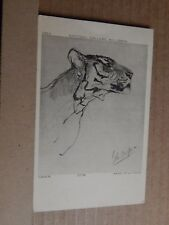 Postcard Head Of A tiger National Gallery Millbank  posted .