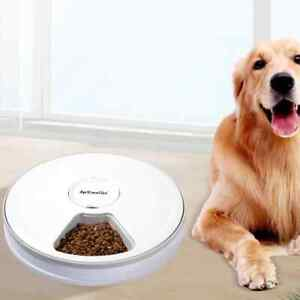 Plug Automatic Pet Feeders With Voice Record Stainless Steel Dog Food Bowl Auto