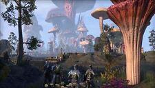 Elder Scrolls Online: Morrowind -- Collector's Edition (Windows/Mac, 2017)